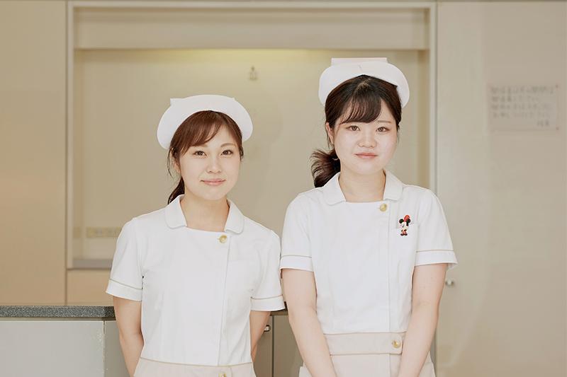 shika-eiseishi